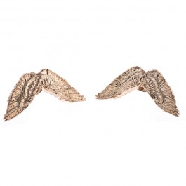 Flight Earrings