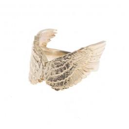 Flight Ring